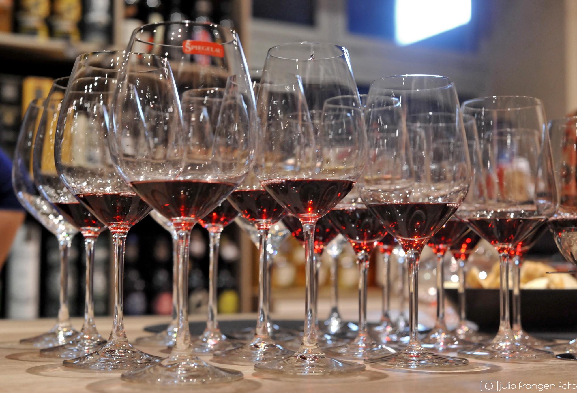 Dubrovnik FestiWine 2017 – vinska istraživanja, kušanja, guštanja …