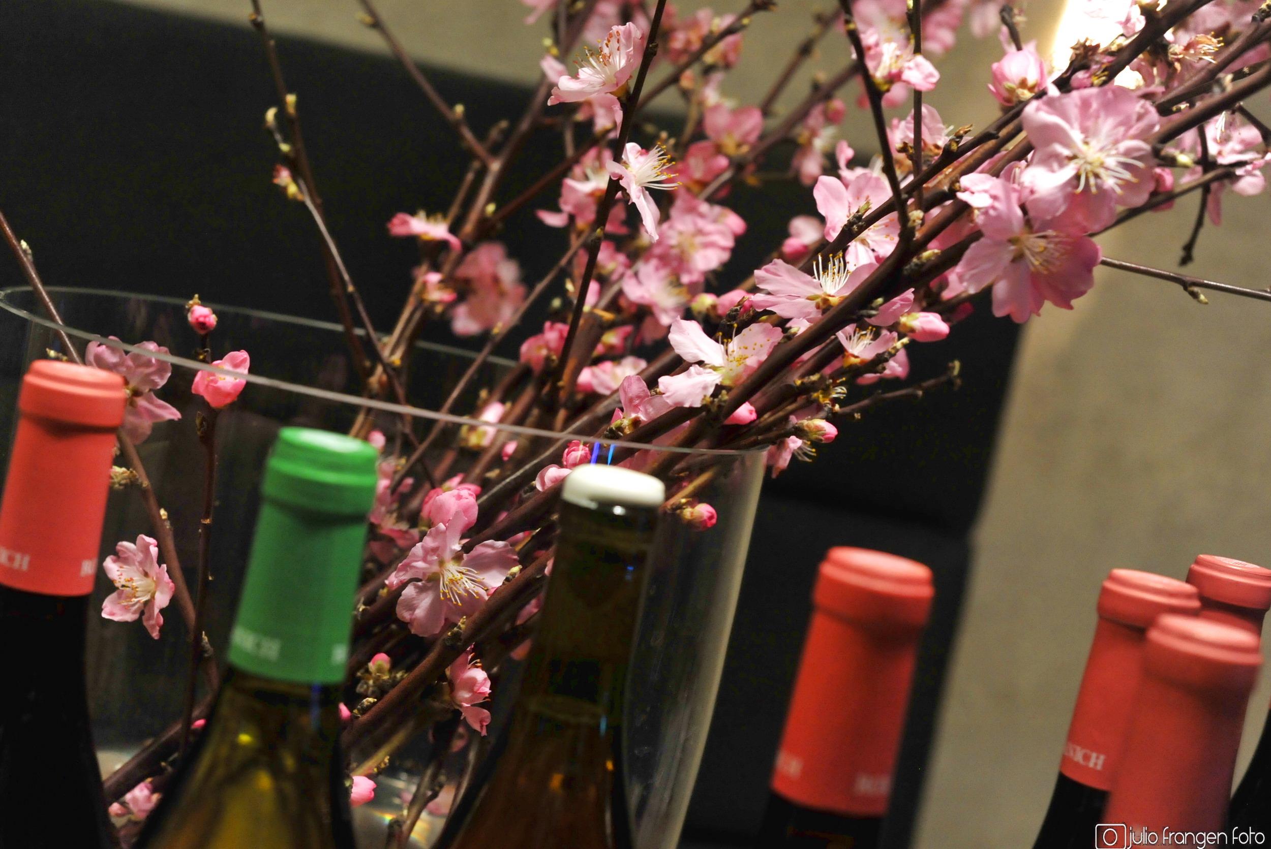 Roxanich vina Pod zidom – uz vinara s ružom!