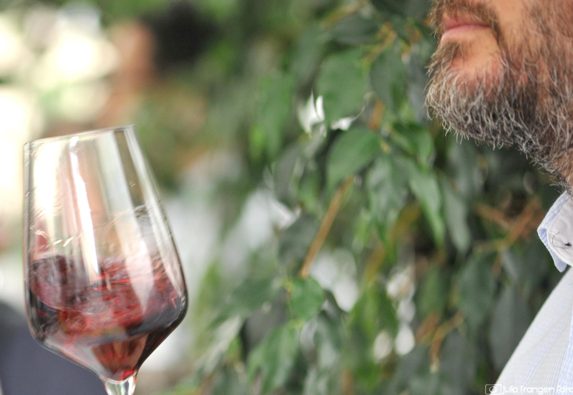 Vinske zvijezde 2019 #4: naš današnji izbor su ružičasta i crvena vina!