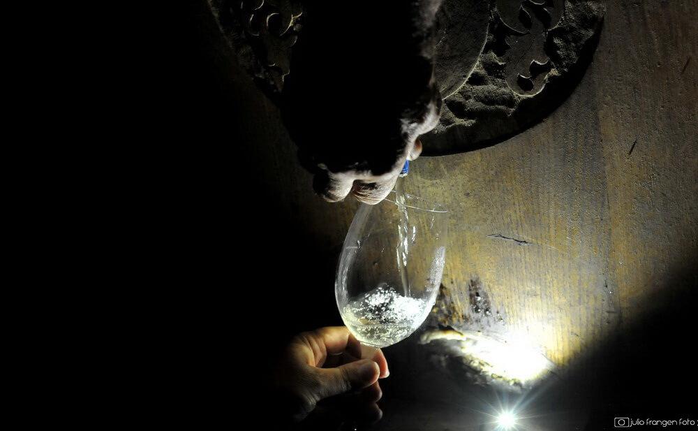 OIV  – što je novo u svijetu vina?
