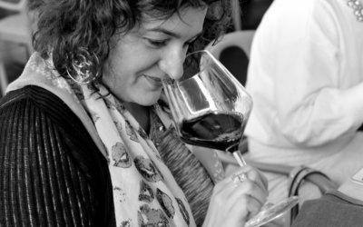 Moj izbor vina u doba korone … (a i inače)