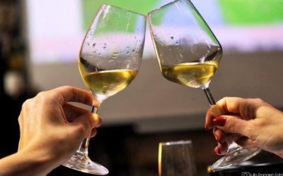 Nova online vinska tržnica – diWine Market by Vinoljupci!