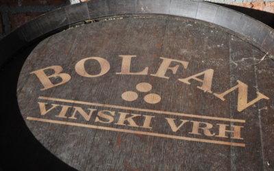 Kod Bolfana na vinskim razgovorima