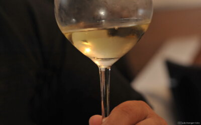 Vinske zvijezde 2020 #3 – Pošip Nerica istinski zavodljivo vino!
