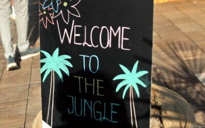 Fuliranje Jungle na Strossmayerovom trgu!
