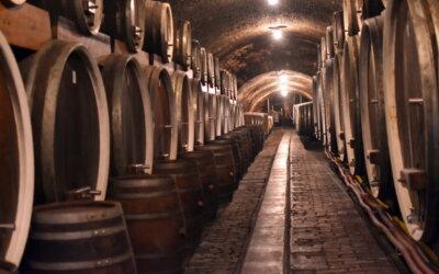 Koja su šampionska vina 33. Bonavite?