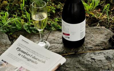 Pjenušavi srijemski doručak u vinogradu vinarije Papak!