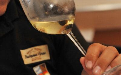 Vinske zvijezde 2020 #3: chardonnay, sauvignon ili graševina – izbor je vaš!