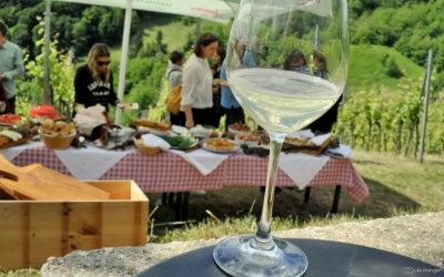 Pjenušavi Erdutski doručak u vinogradu Siber!