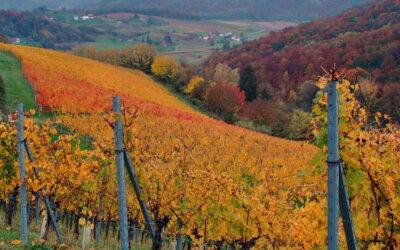 Zagorske boje jeseni!