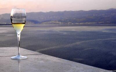 Kvarnerska vina na online kušanju!
