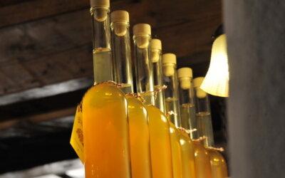 Domačija Novak – iskonski doživljaj domaće hrane i prirodnih vina!