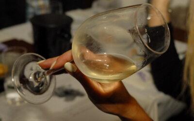 Vinska radionica – word wide wines: zeleni silvanac!