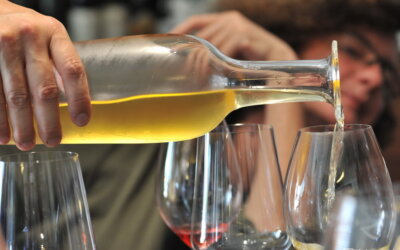 0,5 promila alkohola treba ostati gornja granica – složni su istarski vinari!