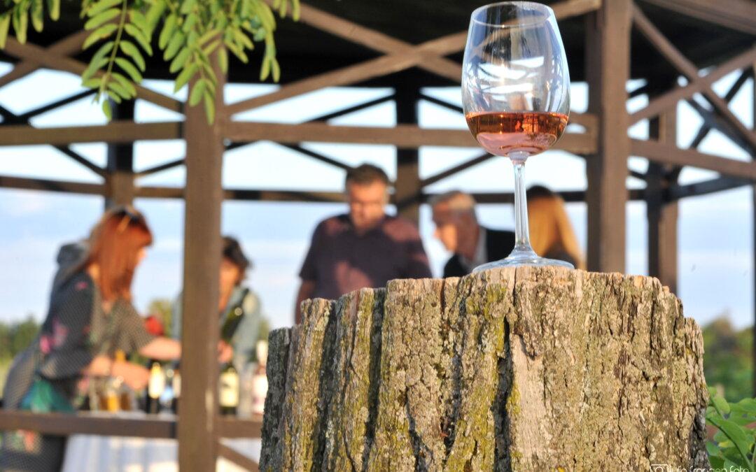4 vikenda vinskog hedonizma – na istoku Hrvatske!