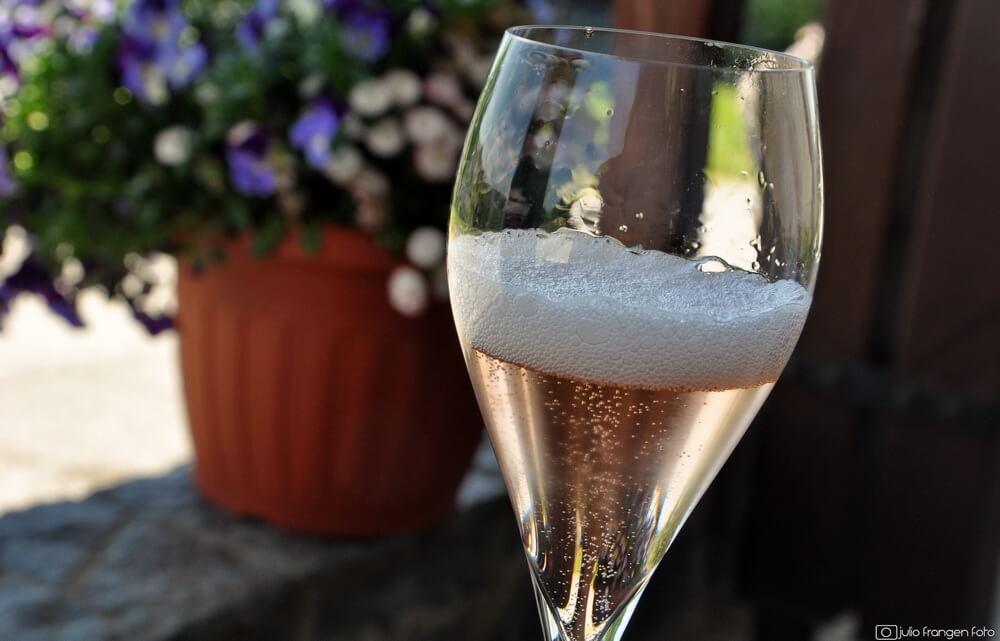 U subotu,12.6.2021-Zagorje vas zove na pjenušavi doručak u vinogradu Petrač na Hršak Bregu!