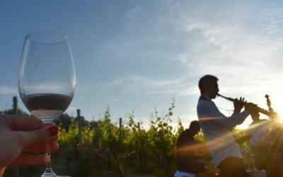 Koncert Jazziane Croatice i zalazak sunca u vinogradu!