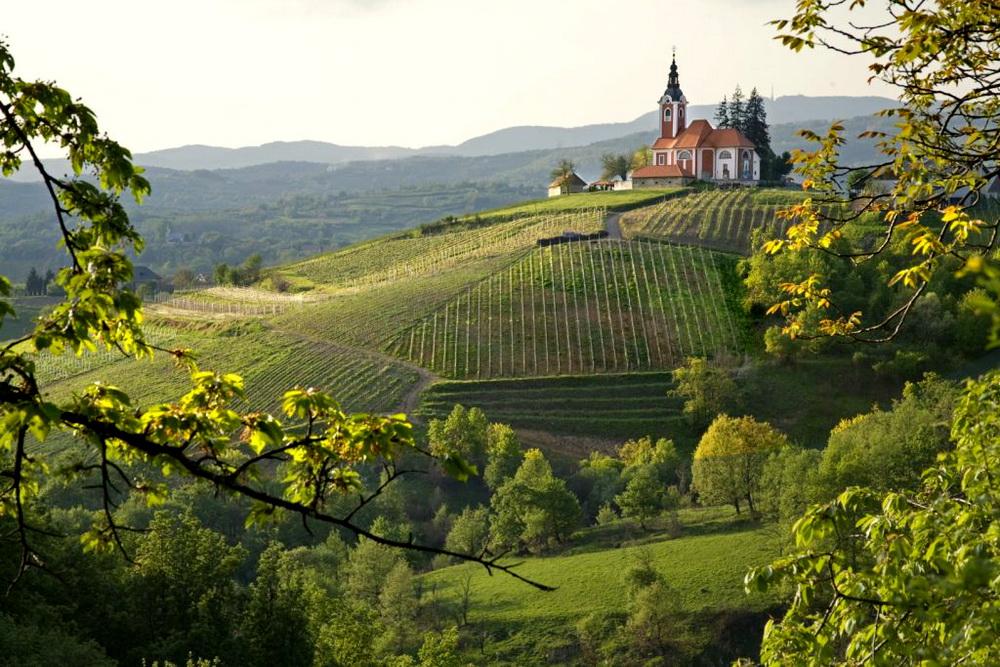 Wine&Walk Weekend Vrhovac