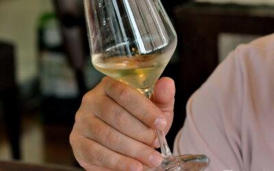 Vinske zvijezde 2021 #1:  Sauvignoni – osvježenje za toplo ljeto!