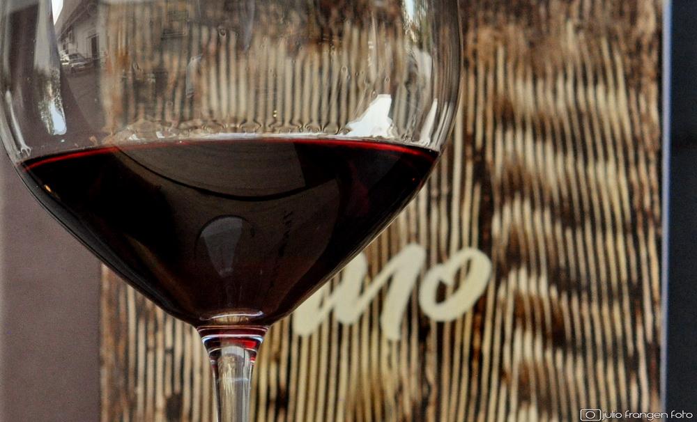 Vinska radionica – VOLITE LI FRANKOVKU?