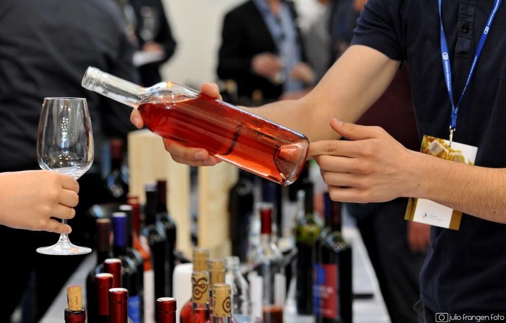 Kušanje najboljih vina Dalmacije